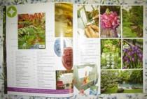Laman Inside Page